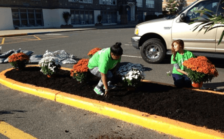 Planting Mums II 11 2013.png